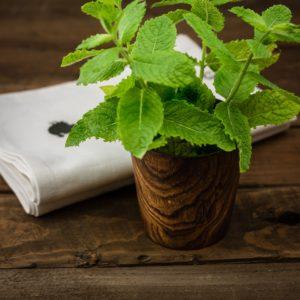 herbs-1475012_1920