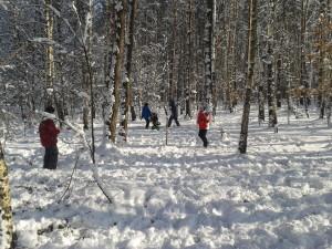zimowisko las